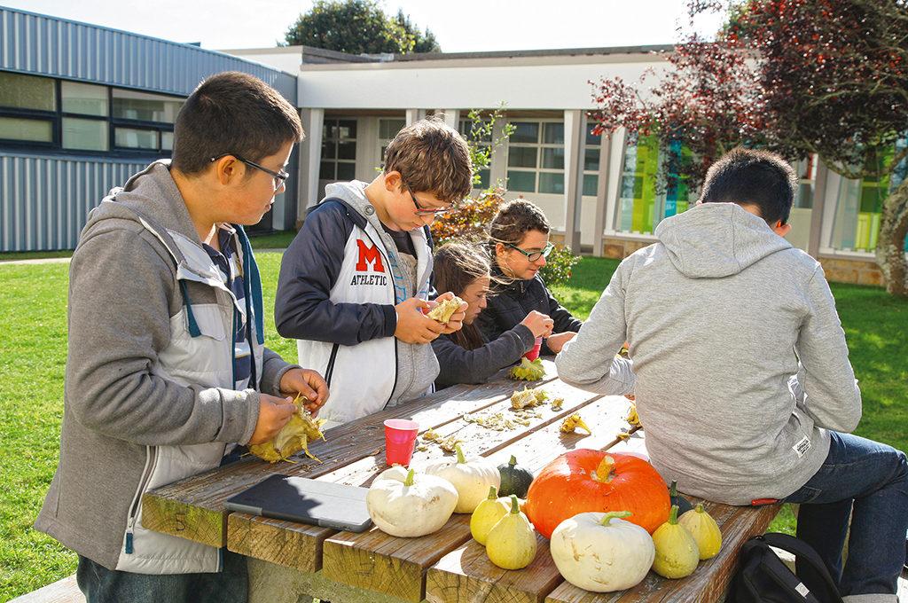 Potager travail terre légumes Unité Localisée pour l'Inclusion Scolaire (ULIS) collège Charles de Foucauld Brest Groupe scolaire Estran