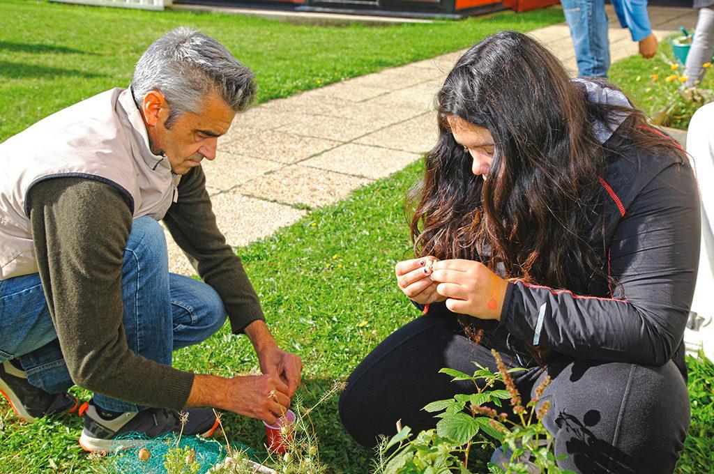 Élèves travail terre jardinage Unité Localisée pour l'Inclusion Scolaire (ULIS) collège Charles de Foucauld Brest Groupe scolaire Estran