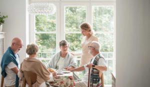 Personnes âgées soins accompagnement structure maison retraite BAC PRO ASSP Estran