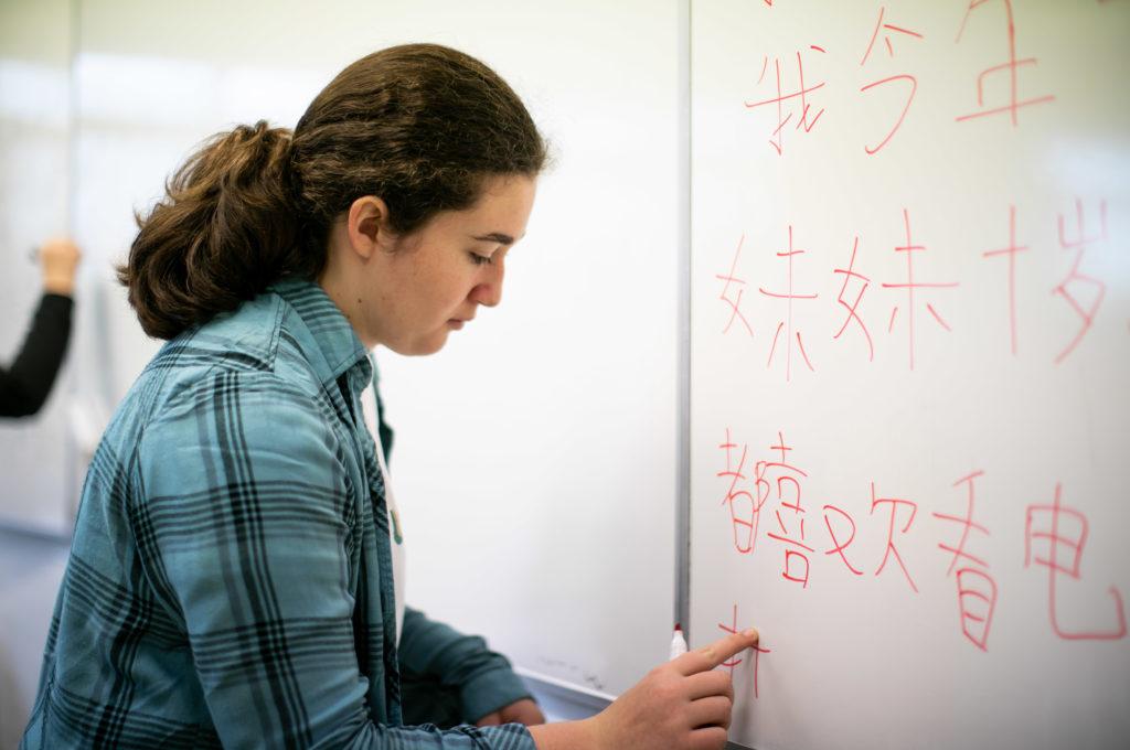 Langue chinois option Éducation enseignement apprentissage seconde première terminale STL STMG lycée Charles de Foucauld Brest Groupe scolaire Estran